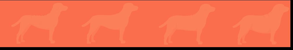 pets2 - Petsquare